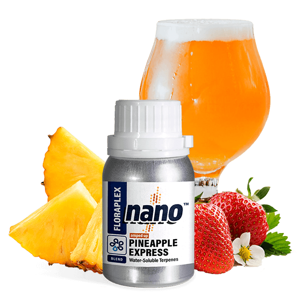 Floraplex Water Soluble Amped Up Nano Pineapple Express terpene bottle with fruit and a glass of beer