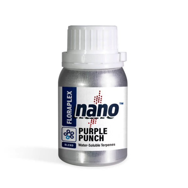 Purple Punch Nano Terpenes 4 oz Canister