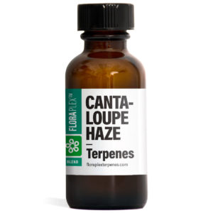 Cantaloupe Haze Terpene Blend - Floraplex 30ml Bottle