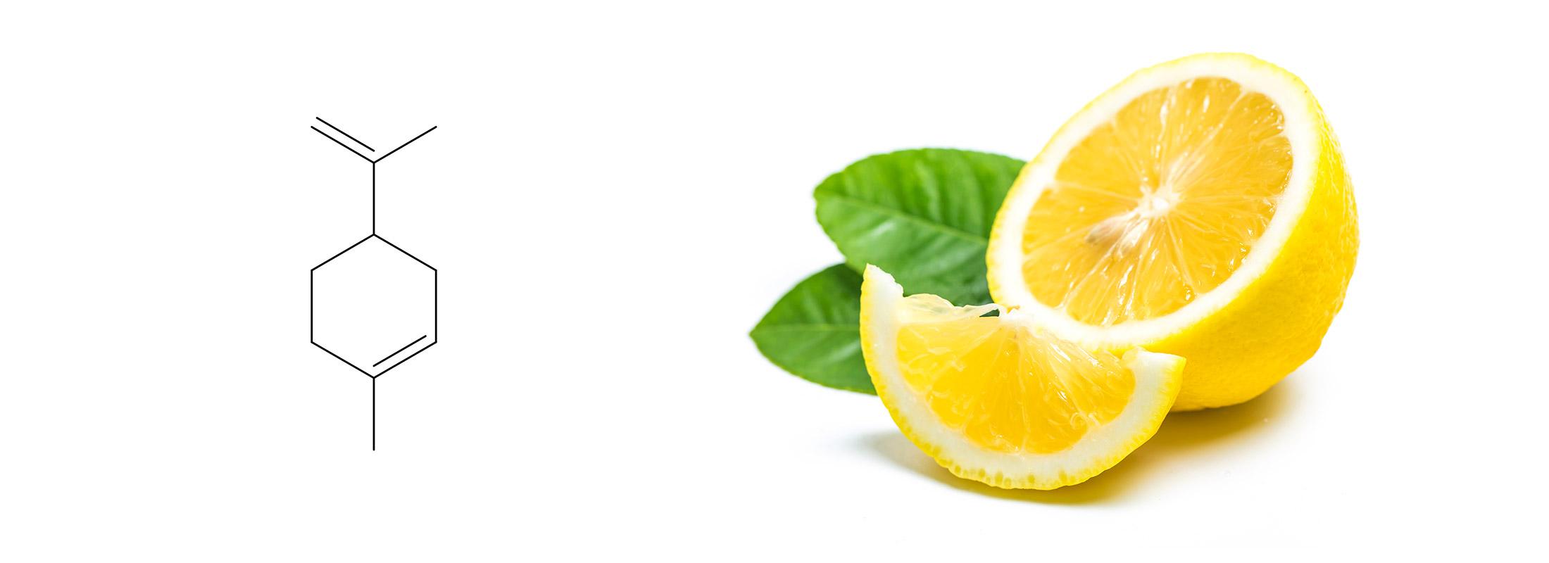 Floraplex_What is Limonene