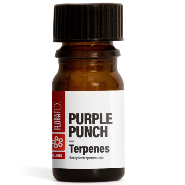 Purple Punch Terpene Blend - Floraplex 5ml Bottle