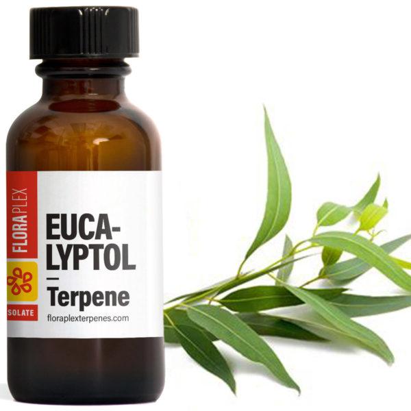 Eucalyptol - Floraplex Terpenes