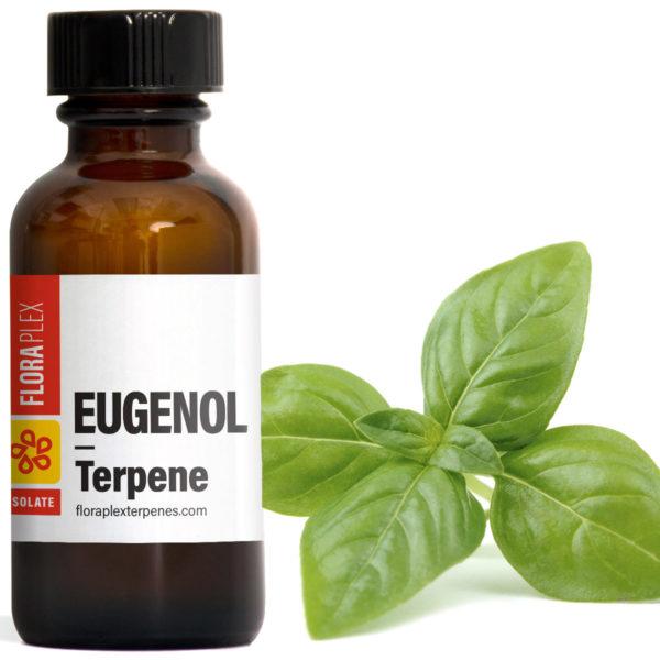 Eugenol - Floraplex Terpenes