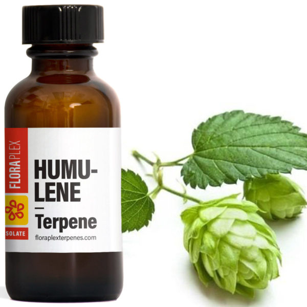 Humulene - Floraplex Terpenes