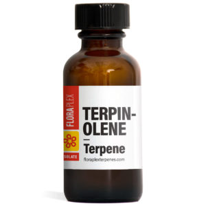 Terpinolene - Floraplex 30ml Bottle