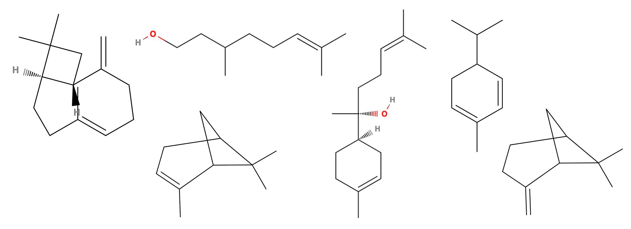 Floraplex What are Terpene Hydrocarbons