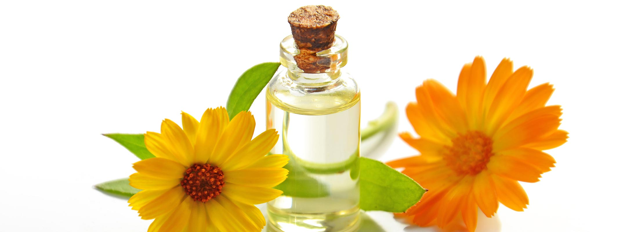 Floraplex - Are Terpenes Essential Oils?