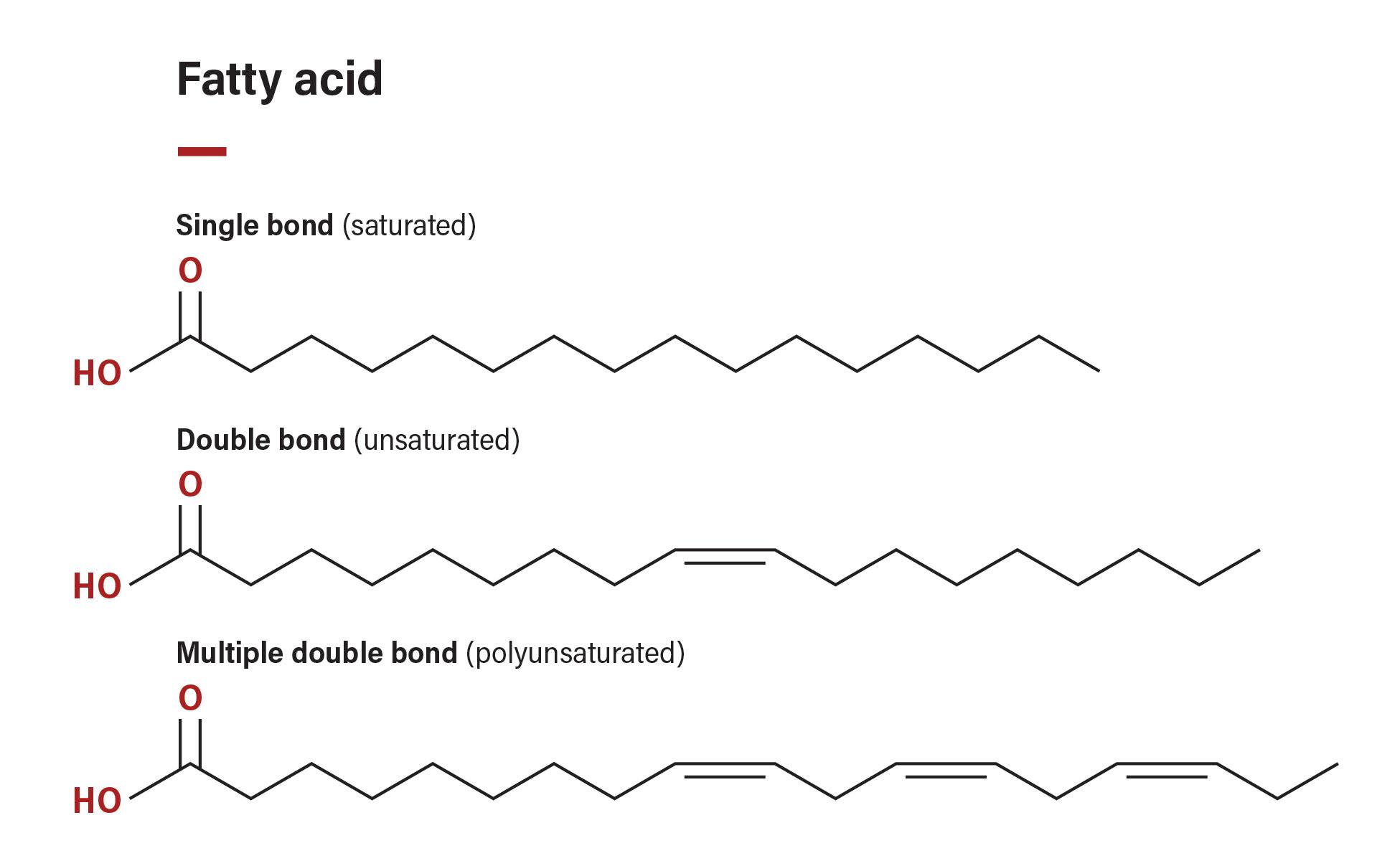 Floraplex Terpenes Lipids Fatty Acids
