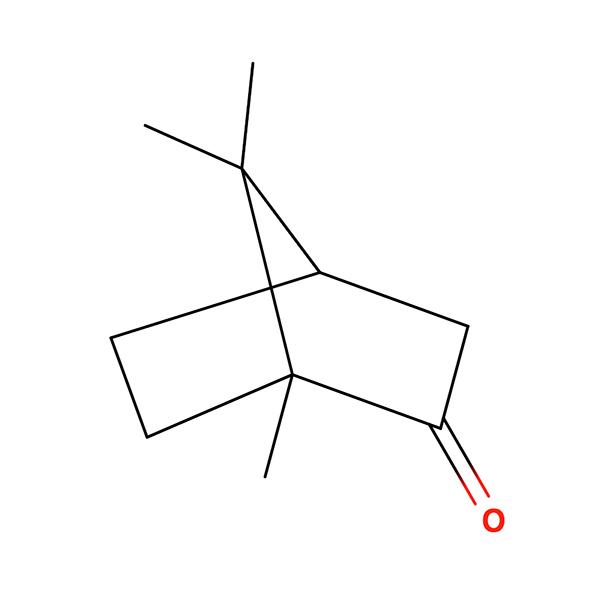 Camphor Terpene Molecule